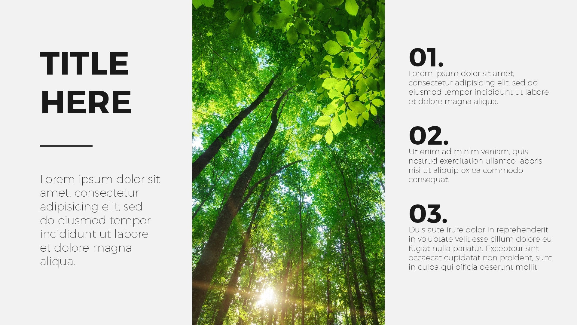 layouts, 7 Great PowerPoint Presentation Layouts